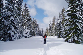 1209 46 skier eniowe