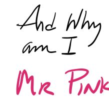 Mr pink rose xsznig
