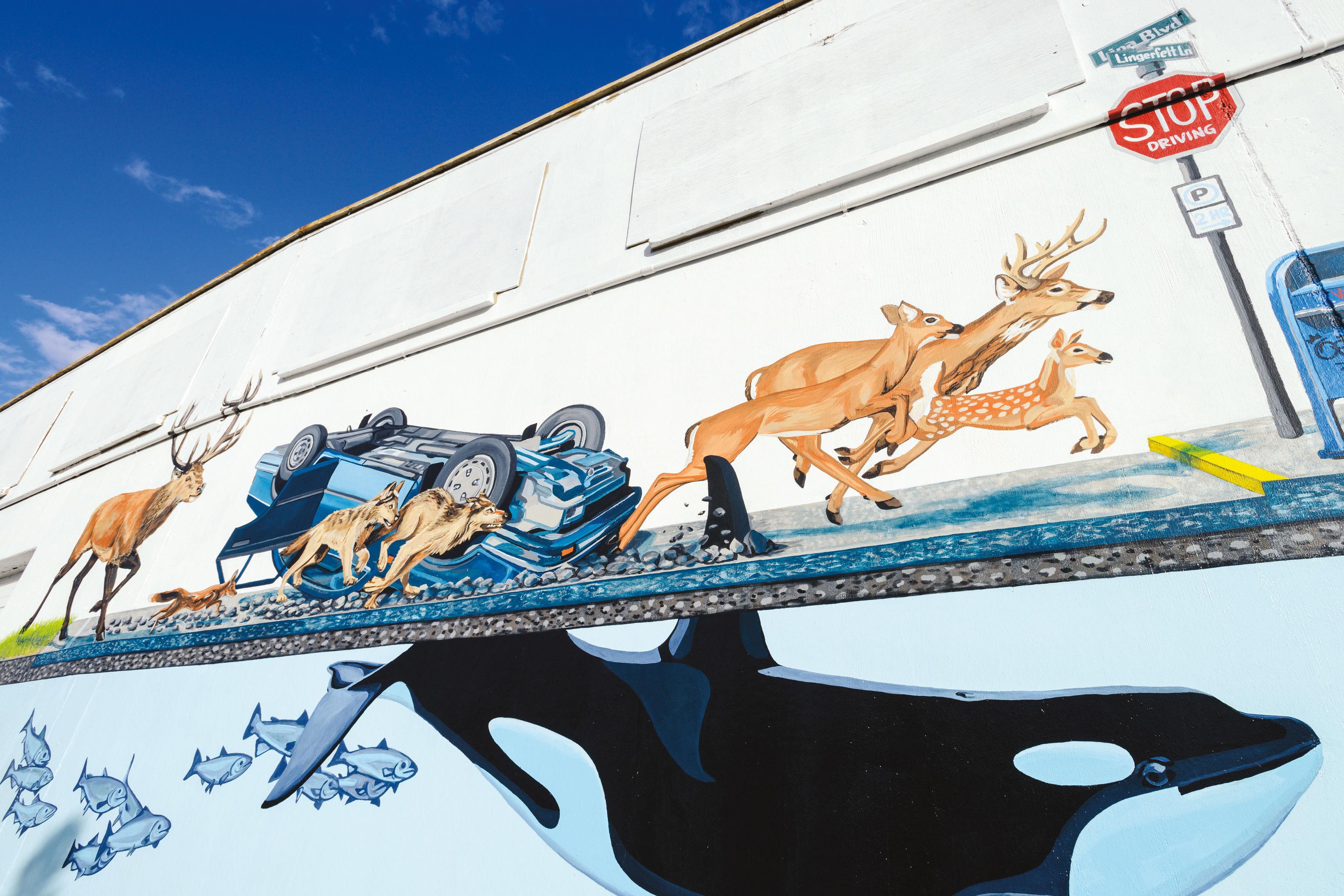 1116 fea2 murals tfwfky