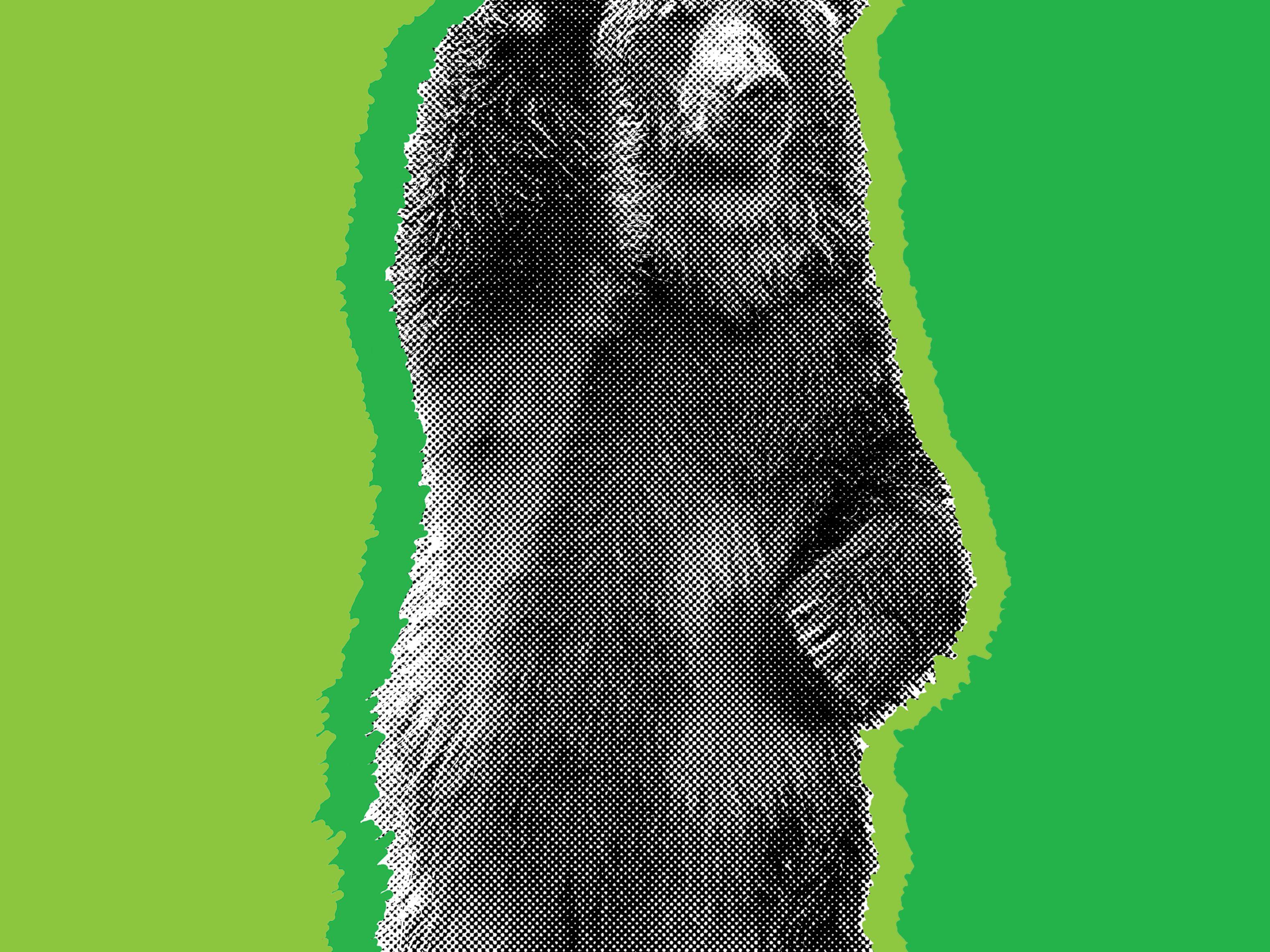 0817 shakedown bear dgxlan