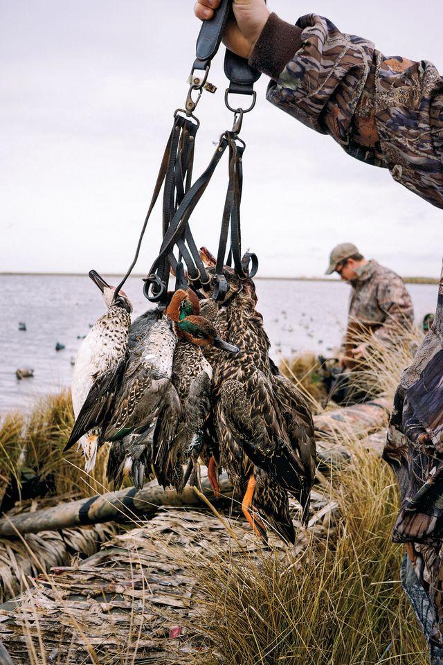 Duck hunting 2 gogmnk