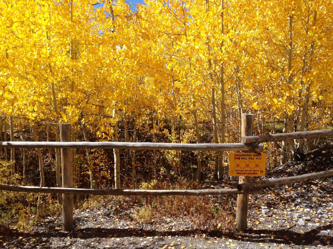 Behind the sign trail mine fall aspen trail finder poxva0