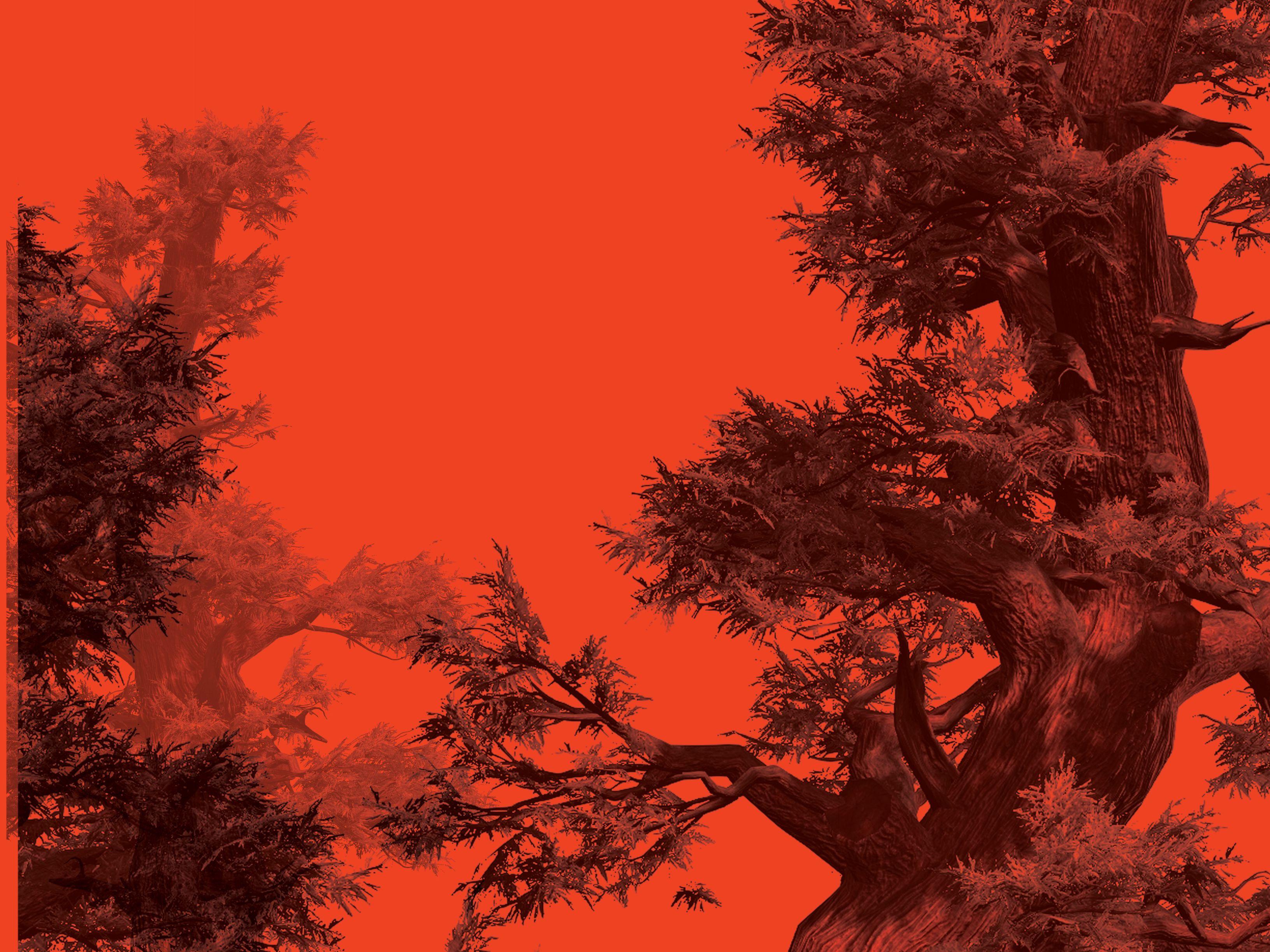 0418 dispatch juniper snvazu