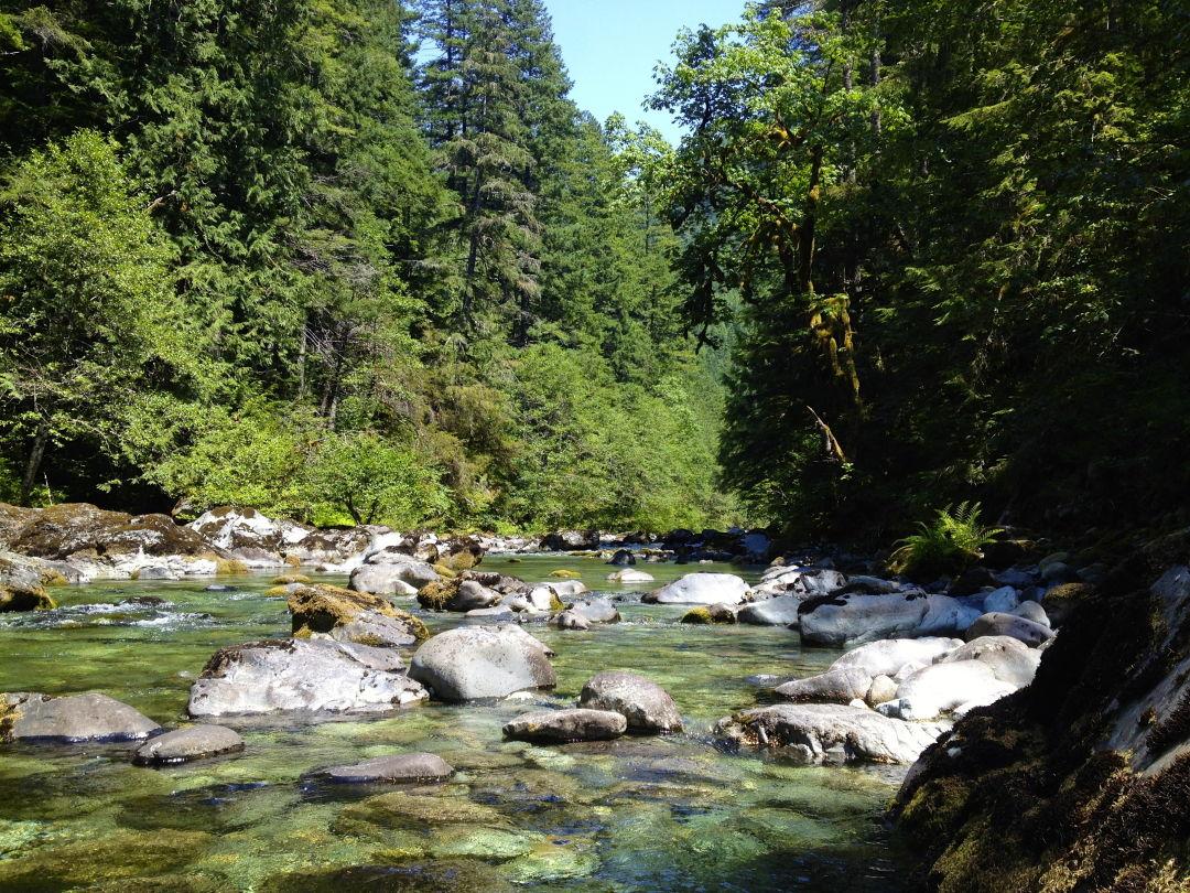 Pomo 0816 swimming holes fame opal creek wilderness ocaubn