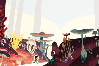 Pomo 0916 mushroom hunting c9hodu
