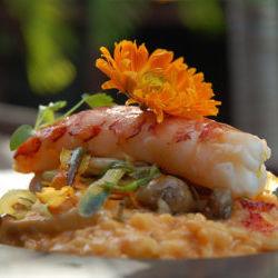 The Best Siesta Key Beach Eats | Sarasota Magazine