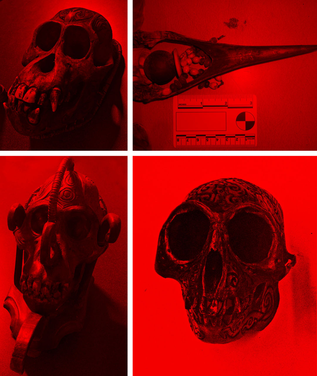 Pomo 1216 smuggling grouped skulls am5gdx