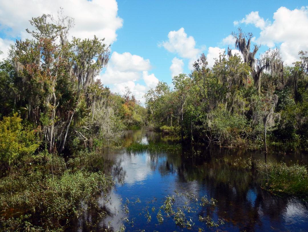 Myakka Headwaters Preserve