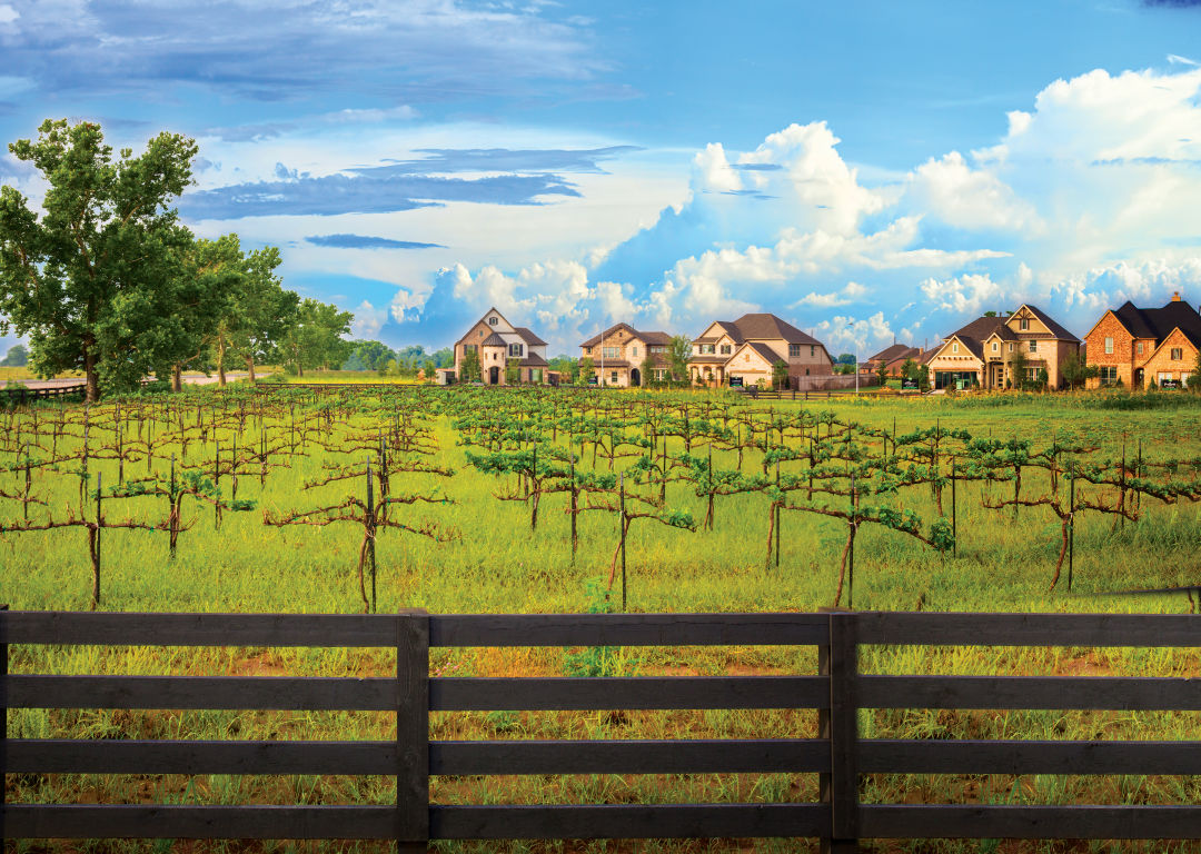 Vineyard homes mlydg3