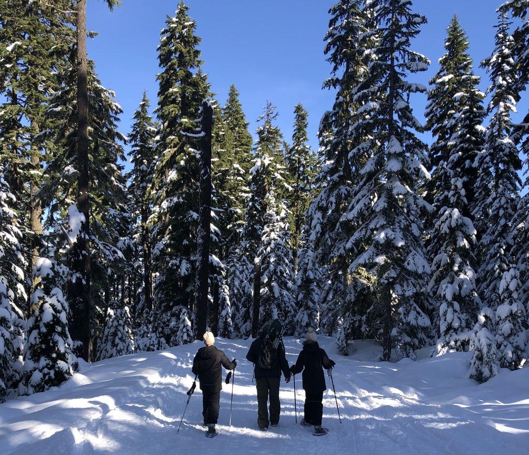 Snowshoeing at Bennett Pass Sno=Park