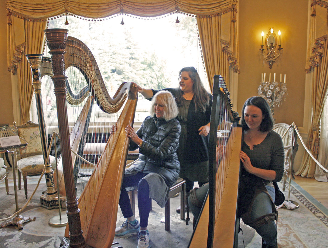 4. play a classical harp in the music room phumnu