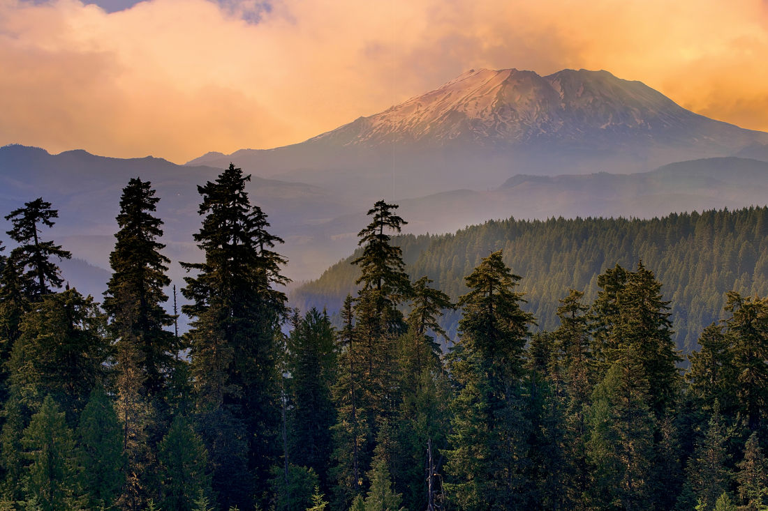 16 perfect trails for exploring mount st helens portland monthly