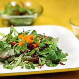 08 april hand 115 salad plate ybzr9n