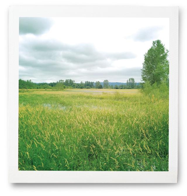 0917 field notes field dwoptx