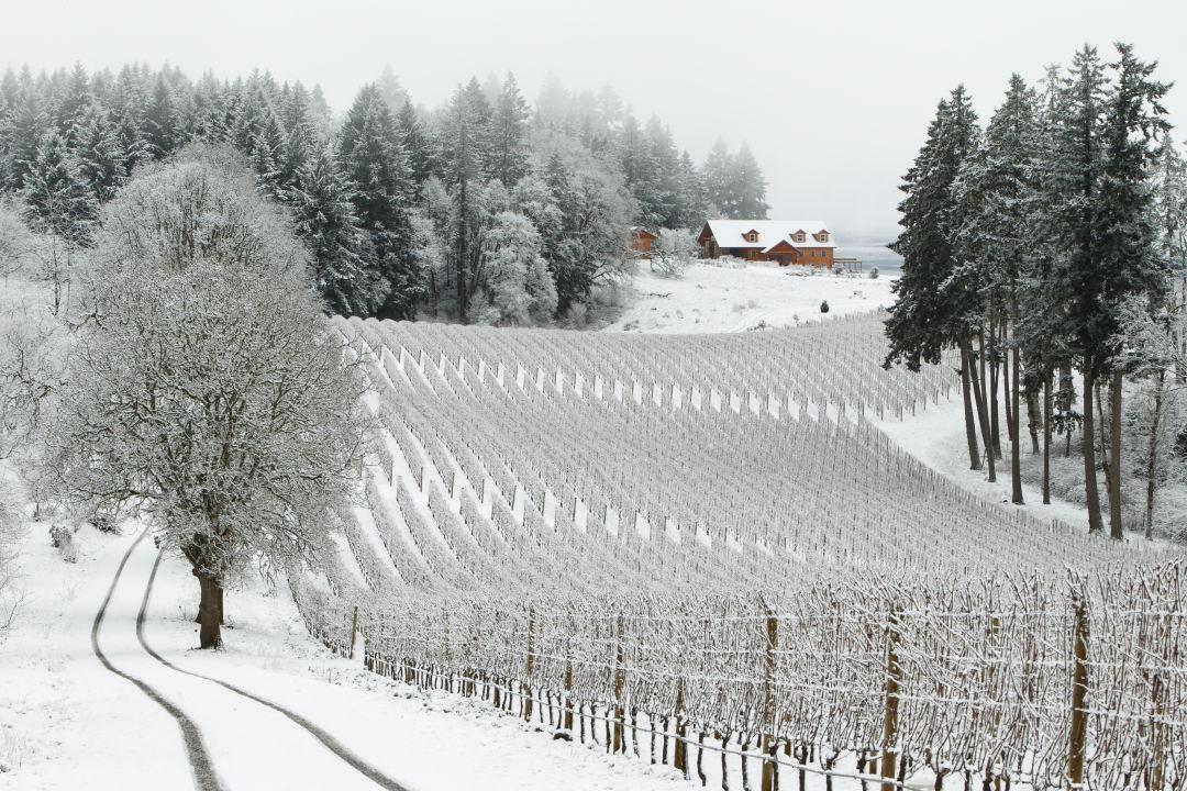 120115 094716 mk4 7567 winter s hill in snow   view from      vista hills plmmpt