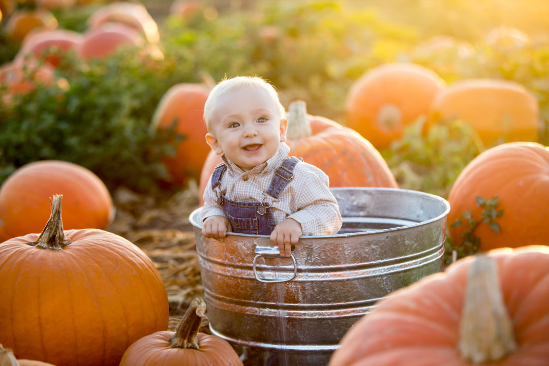 A cute baby at a pumpkin patch