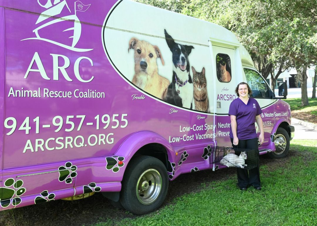 Maggie O'Brien with a cat from ARC's feral cat program.