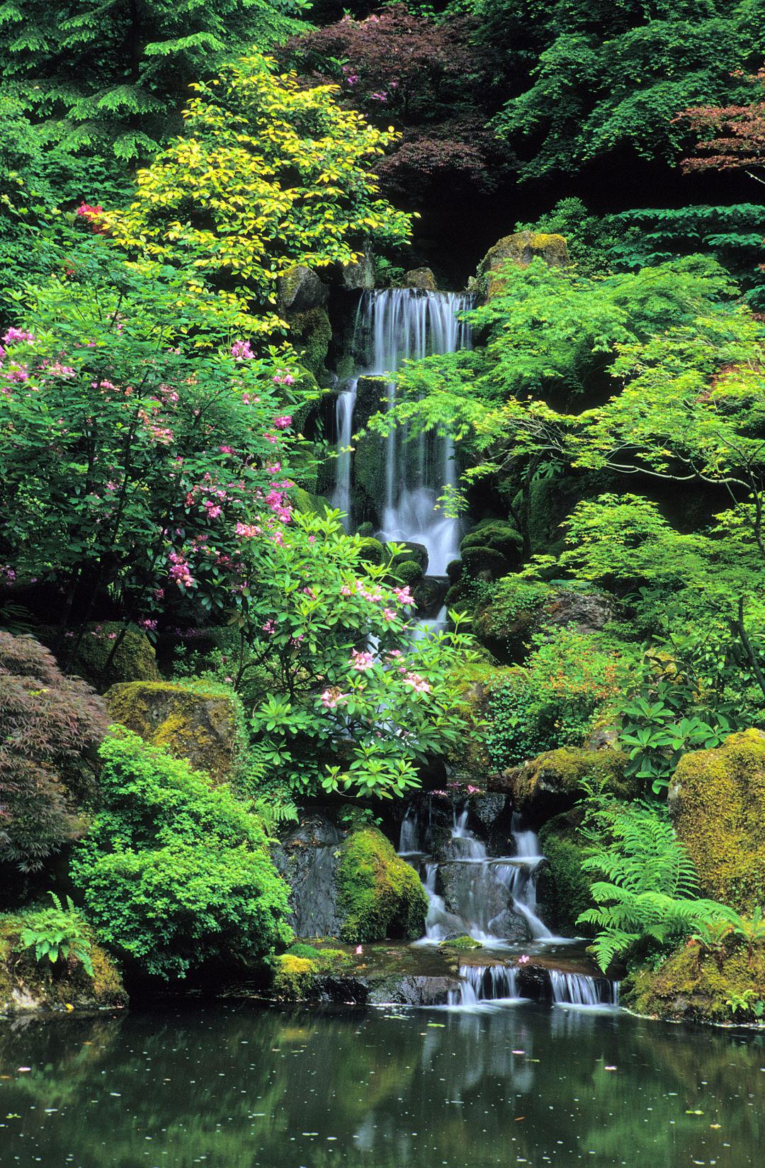 Portland Japanese Garden Store: Portland Japanese Garden Reopens March 1