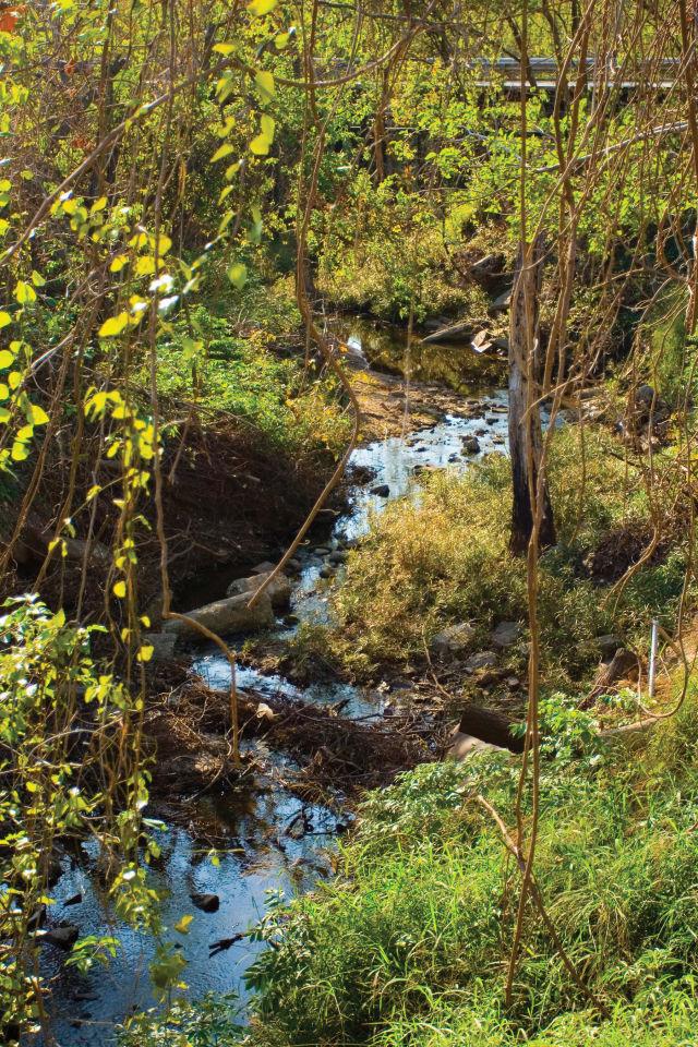 0217 buffalo bayou park japhet creek allens landing iivyz5
