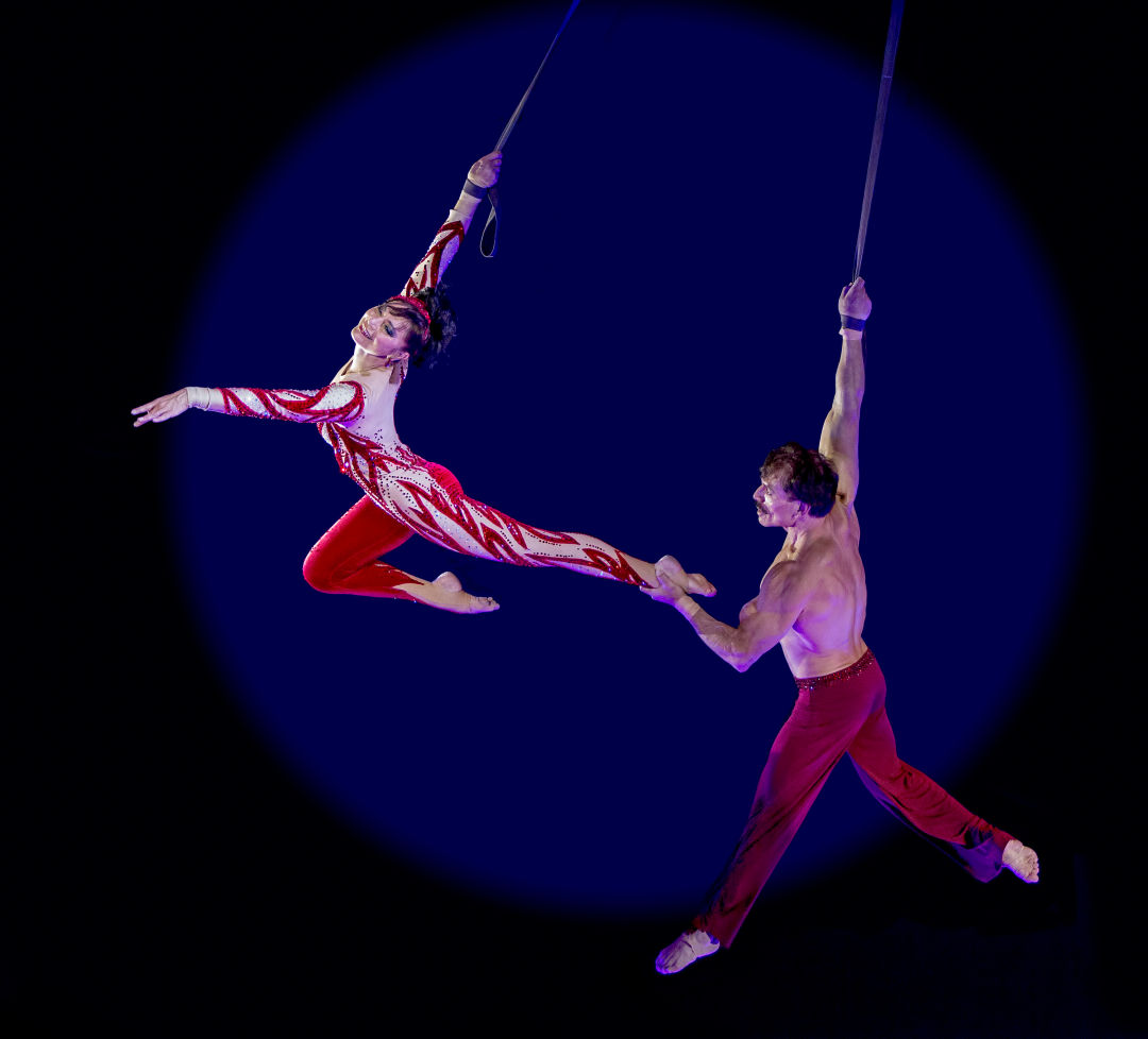 Circus sarasota dolly jacobs rafael palacios kznbzo
