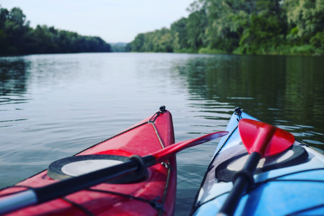 Two kayaks on flat water with trees in background