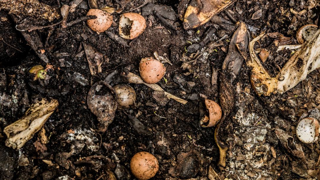 Compost tap2gi