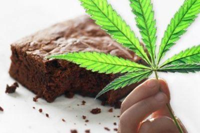 Marijuana brownie w0sxc3
