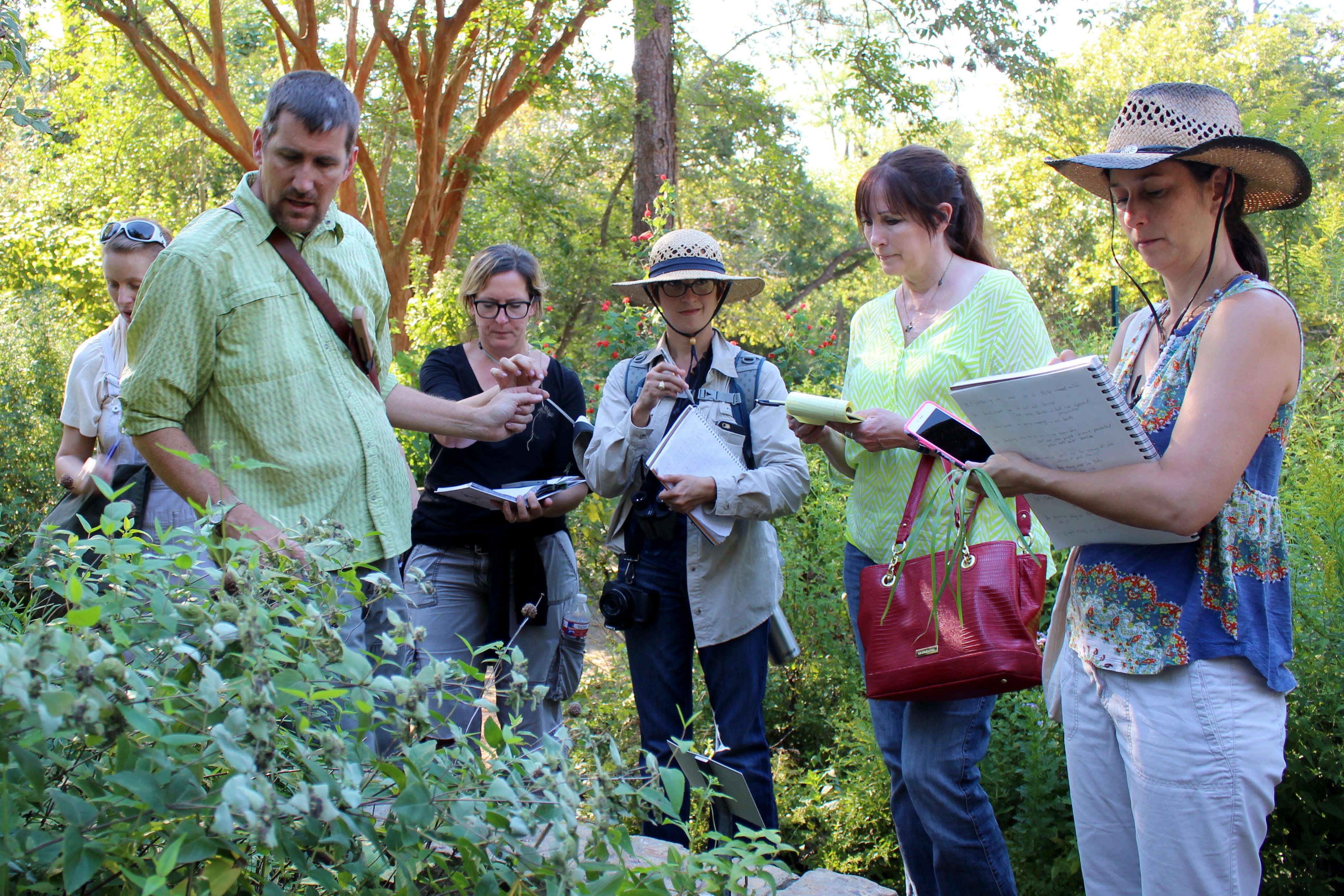 Edible wild plants  photo credit kelsey low ql5wvx