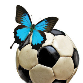 Soccer butterfly ddjqef