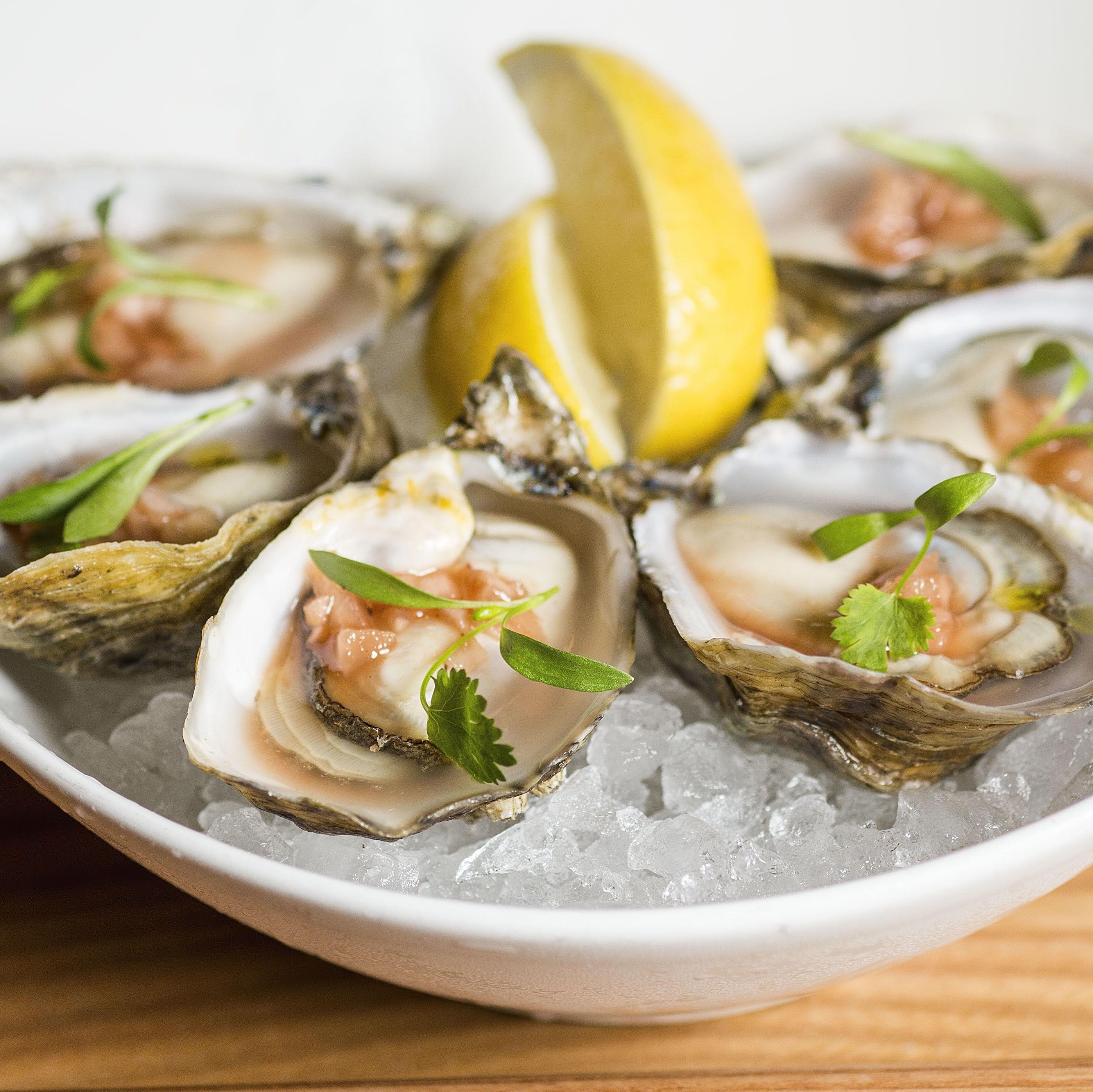 Kusshi oysters hix5b1