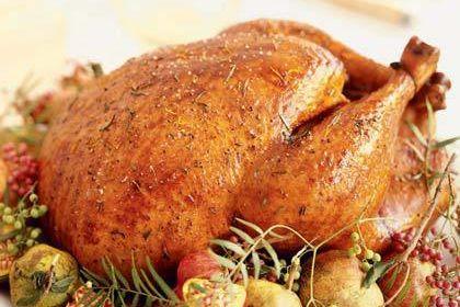 2k10 roast turkey y5bp86