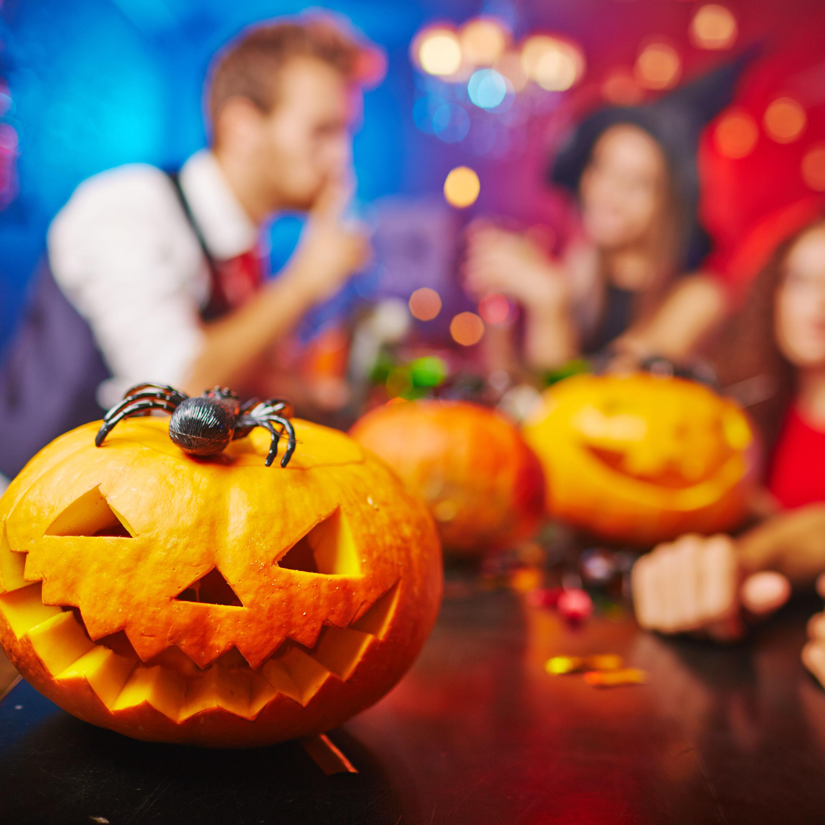 Shutterstock 309592571 pkc3av