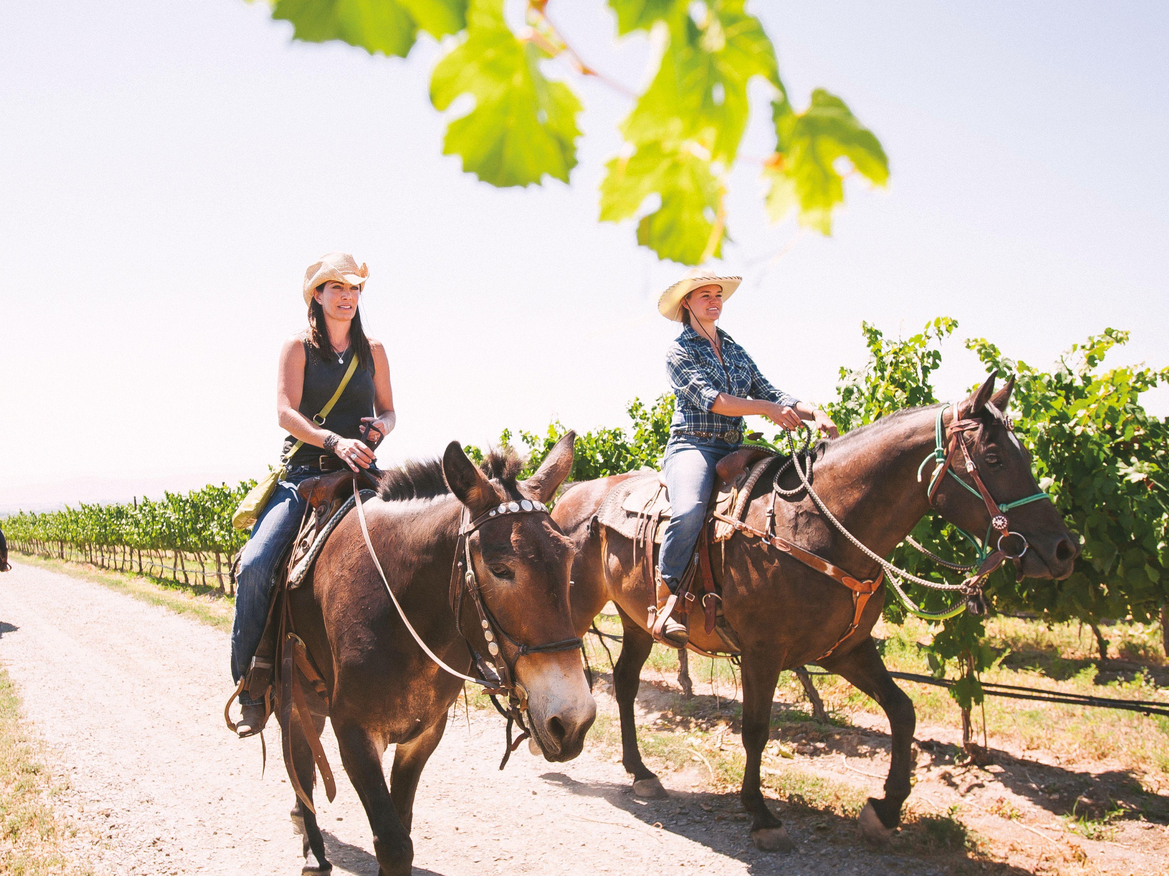 1017 wine country escapes yakima horses flnca5
