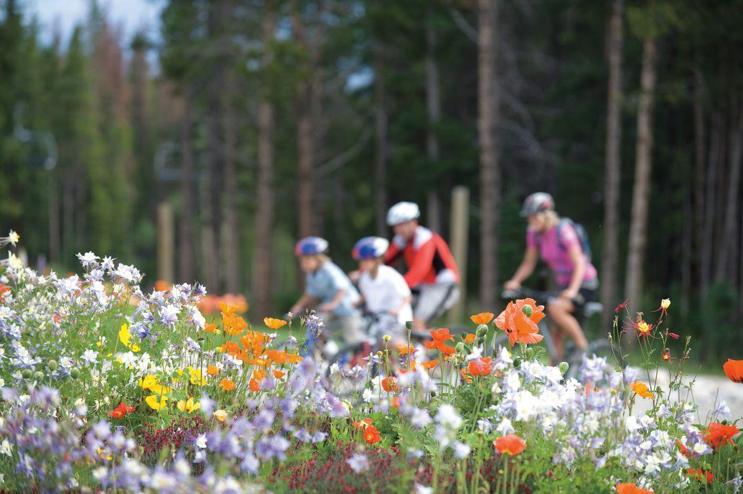 Cosu summer 2013 panorama vail resort family biking flowers q1deob