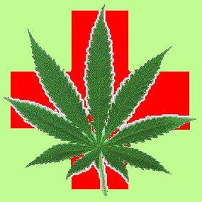 Medmarijuana ntfpnt