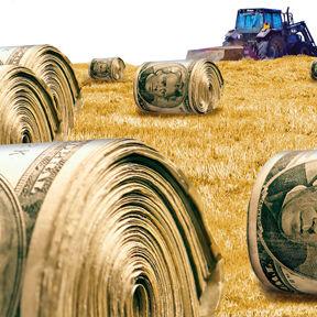 Farm subsidies t8mmia