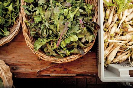 Farmers market salad lwlsga wlijnx