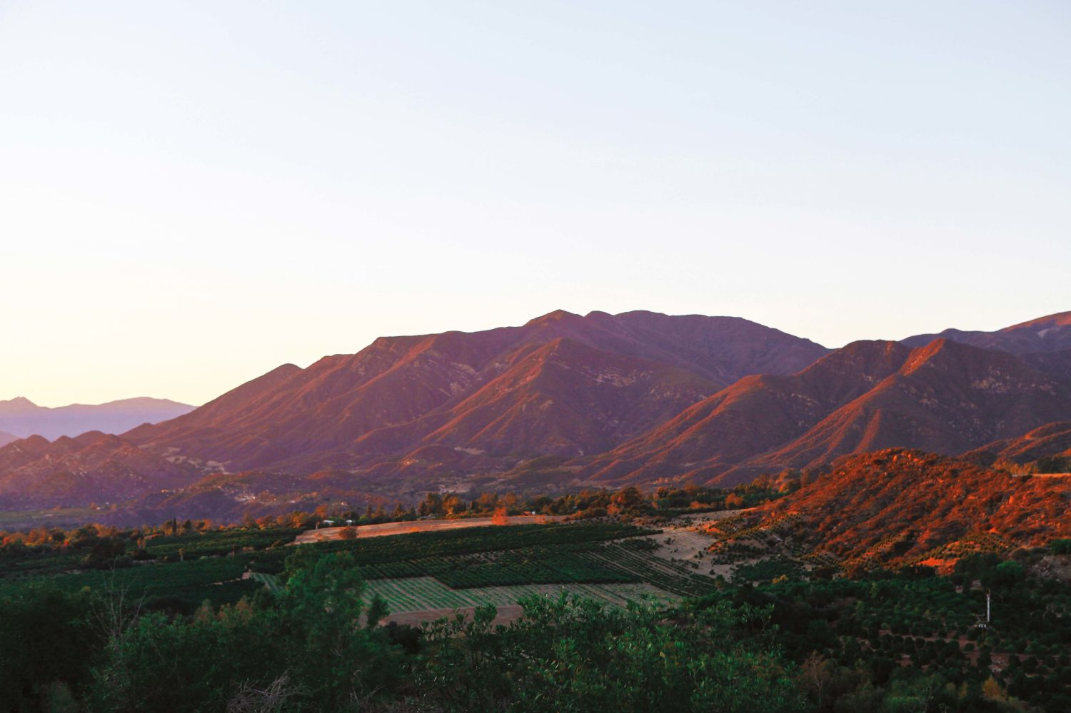 Do You Like Palm Springs? Go Soak Up All the Vibes in Ojai