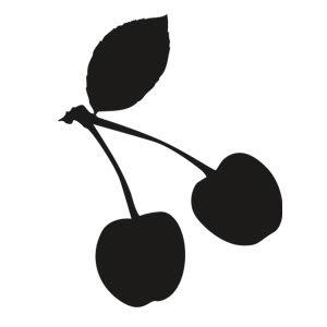 Cherry ipy99v