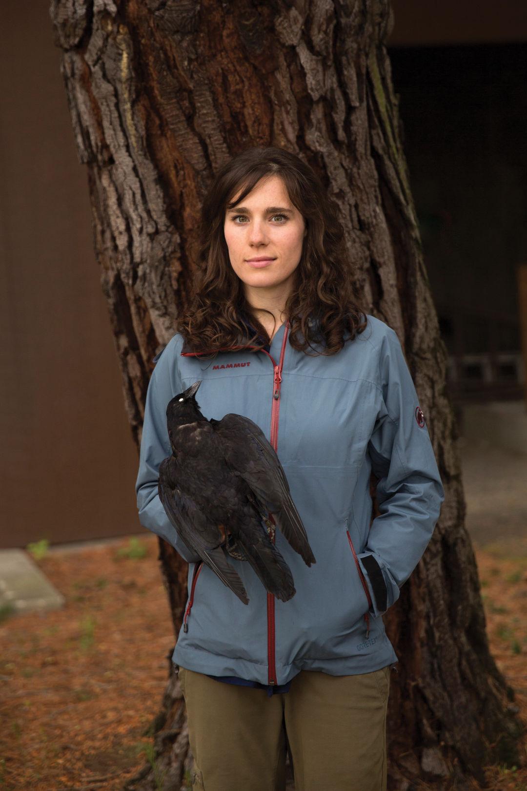 The Secret Life of Urban Crows | Seattle Met