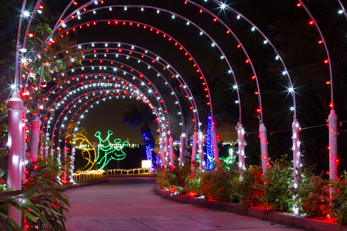 Festival of Lights 2015 Tunnel tkb3ir - How Much Does Moody Gardens Cost