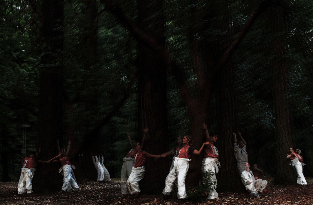 Hand2mouth psychic utopia ensemble forest  large filen mishima photography marguier design tq6h3n