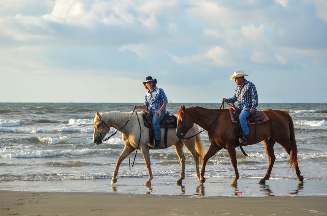 0617 ways to relax galveston beach horse pony rides tjzvmm