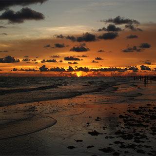 Sarasota beach kyriakos jvgq95