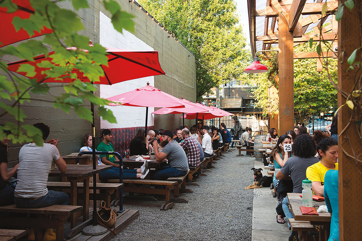6 Essential Portland Neighborhoods for Newcomers to Explore
