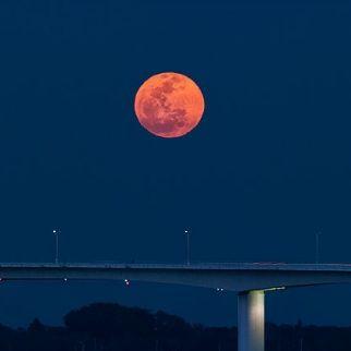 Bloody moon jrua1m