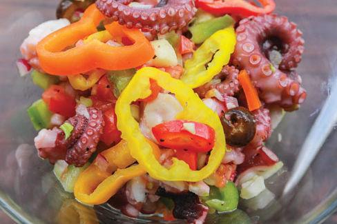 Hi judi octopus tjstv4
