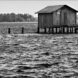 Bradenton beach shack swdrh6