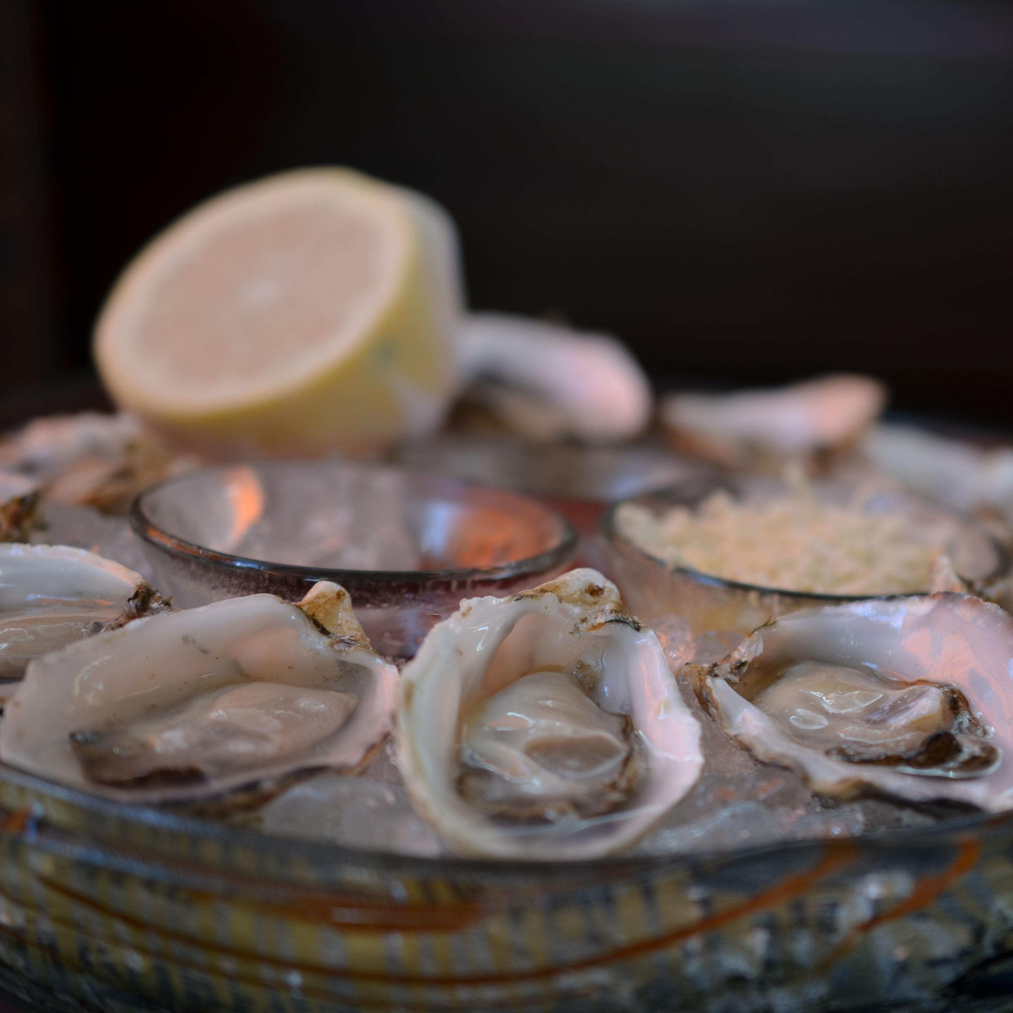 Oysters   raw qhbx6d