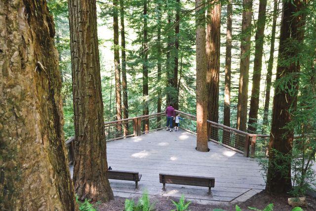 Pomo 0716 botc outdoors hoyt arboretum mcysz0